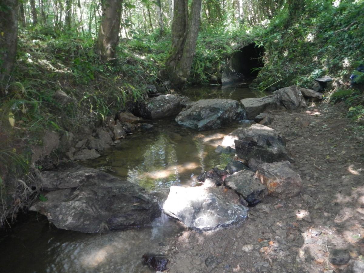 Brook Stream: Morphology for Mitigation