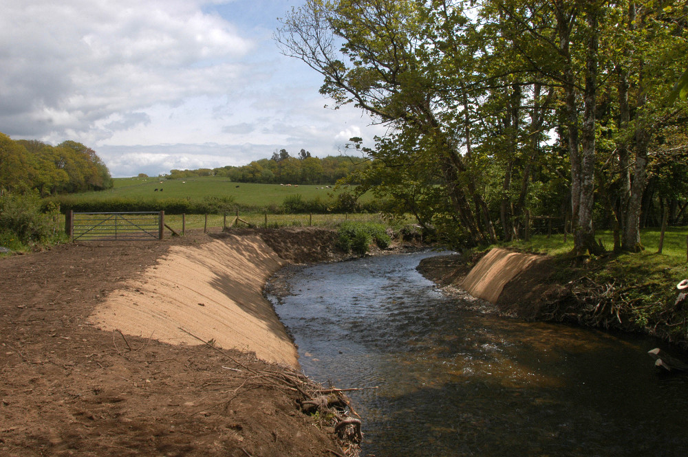 Two National Parks Now Accessible to Migratory Fish in the River Taw!