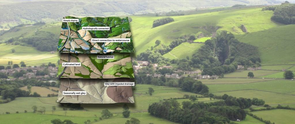 EcoSpatial GIS Training