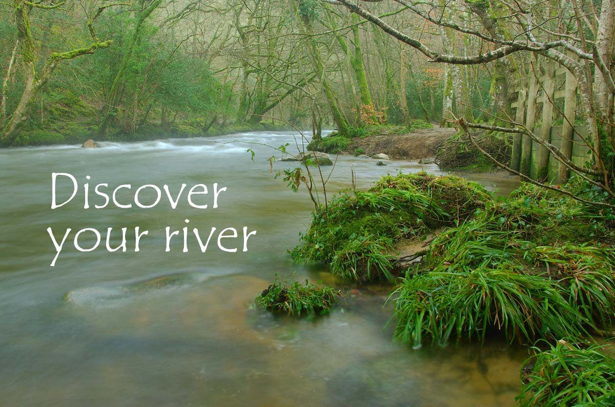 Westcountry rivers trust water is life discover your river buycottarizona Gallery