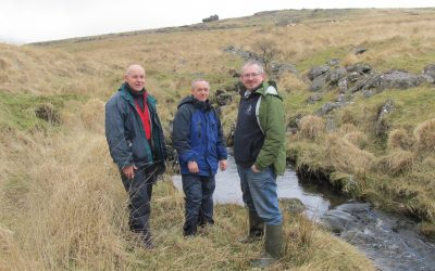 pH Balancing Trial Could Create Healthier River for Dartmoor Fish