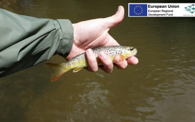 Fish Pass: our innovative new angling app