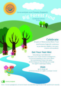 Celebrating 25 and 100 Years @ Cardinham Woods