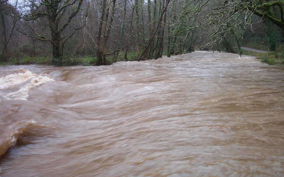 Westcountry Rivers Trust is partnering with the Flood Expo 2017