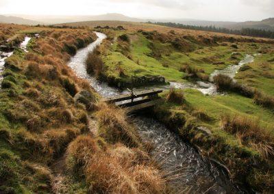 Journeying along the River Dart