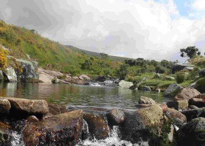 River Dart