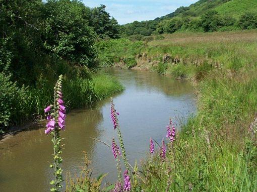 River Fal