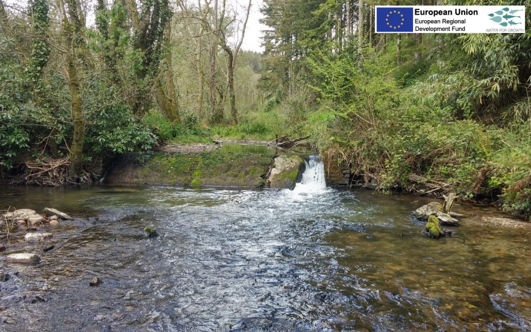 Water for Growth: Barriers to Migration | Westcountry Rivers