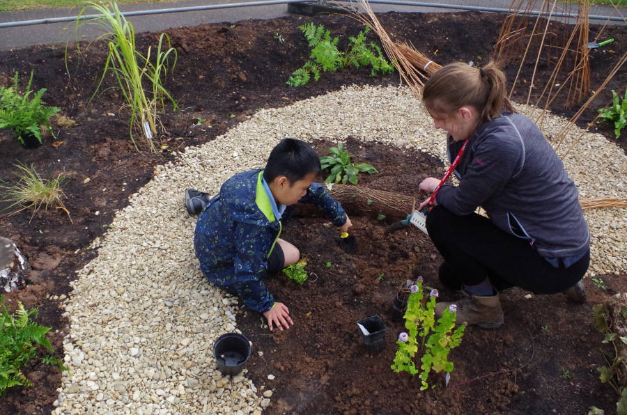 Taunton school pupils enjoy our first rain garden