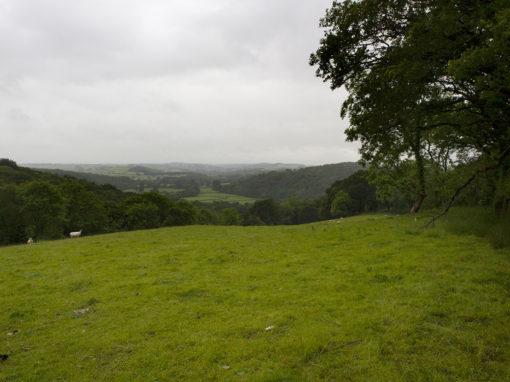Devon & Cornwall Soil Alliance