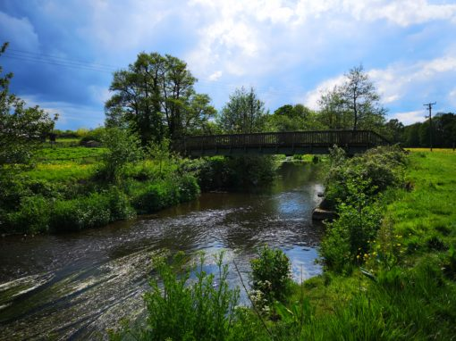 Climate Change and the River Culm