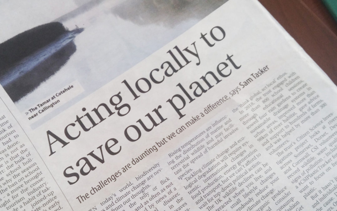 Think global and act local to tackle the environmental crisis