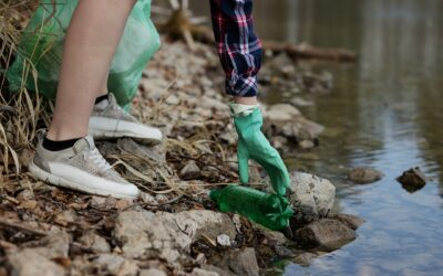 Take action for your local waterways