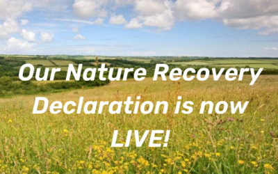 North Devon UNESCO Biosphere launches Nature Recovery Declaration and Plan