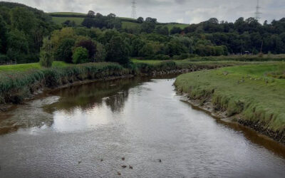 North Devon Biosphere joins our call for volunteers to contribute to river Citizen Science.