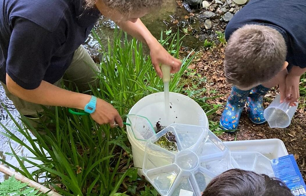 Westcountry citizen science leader showing kids invertebrates at riverbank
